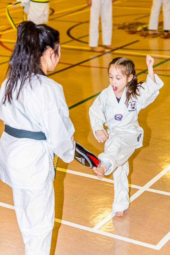 Beginner Tae kwon do 2018